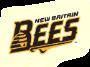 Team Bees