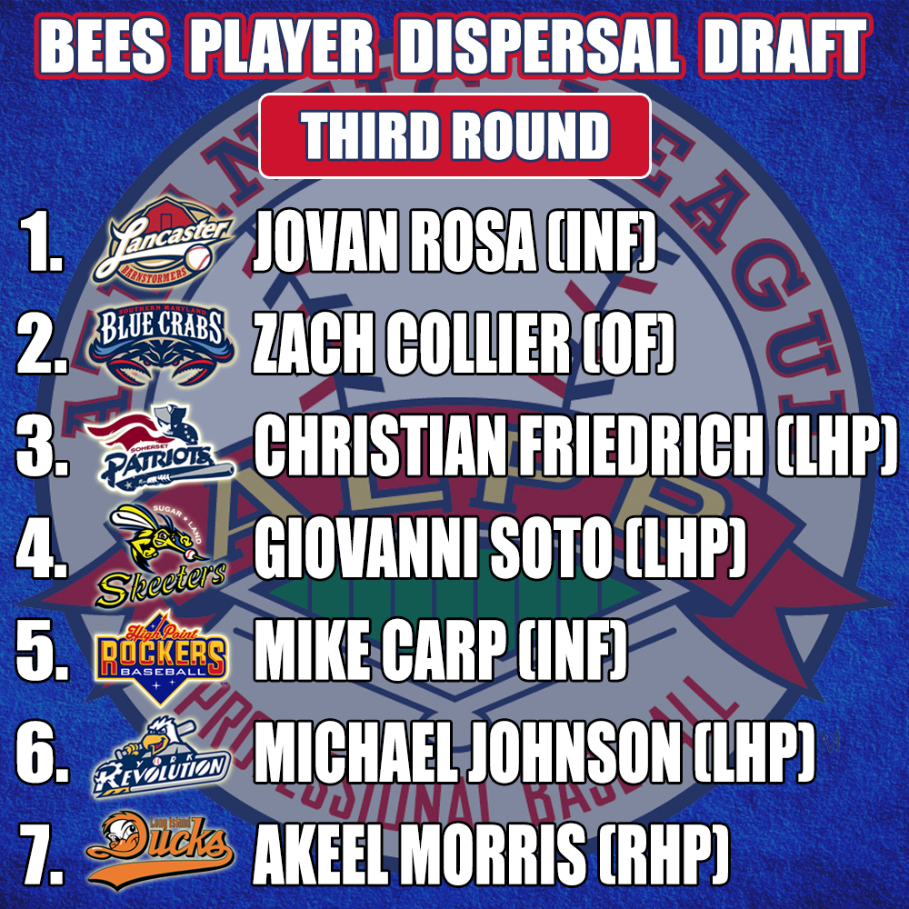 Bees-Player-Dispersal-Draft-Picks-Round-Three.jpg