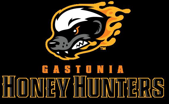 Gastonia Professional Baseball Announces Team Name, Unveils Brand