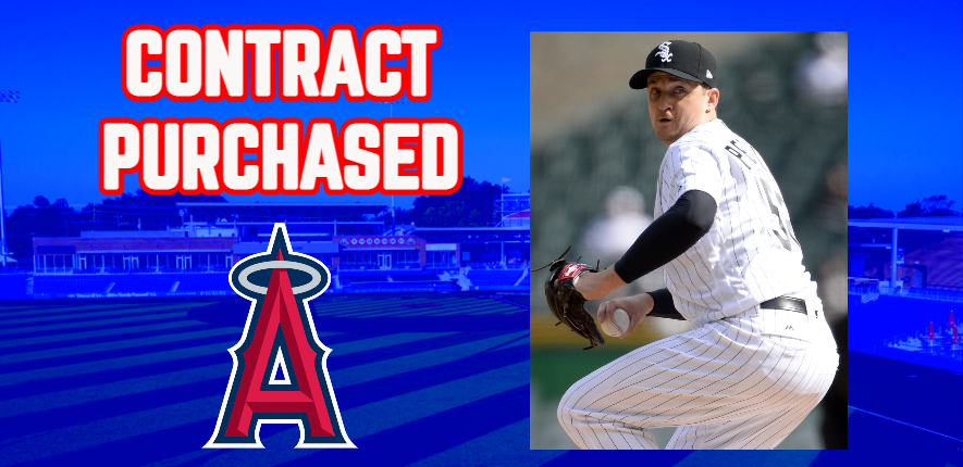 Angels Purchase Contract of High Point's Petricka