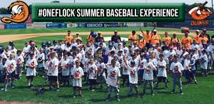 Presenting: The #OneFlock Summer Baseball Experience