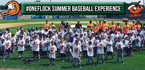 Presenting: The #OneFlock Summer Baseball Experience
